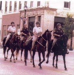 Hourse Mounted Reserve Deputies